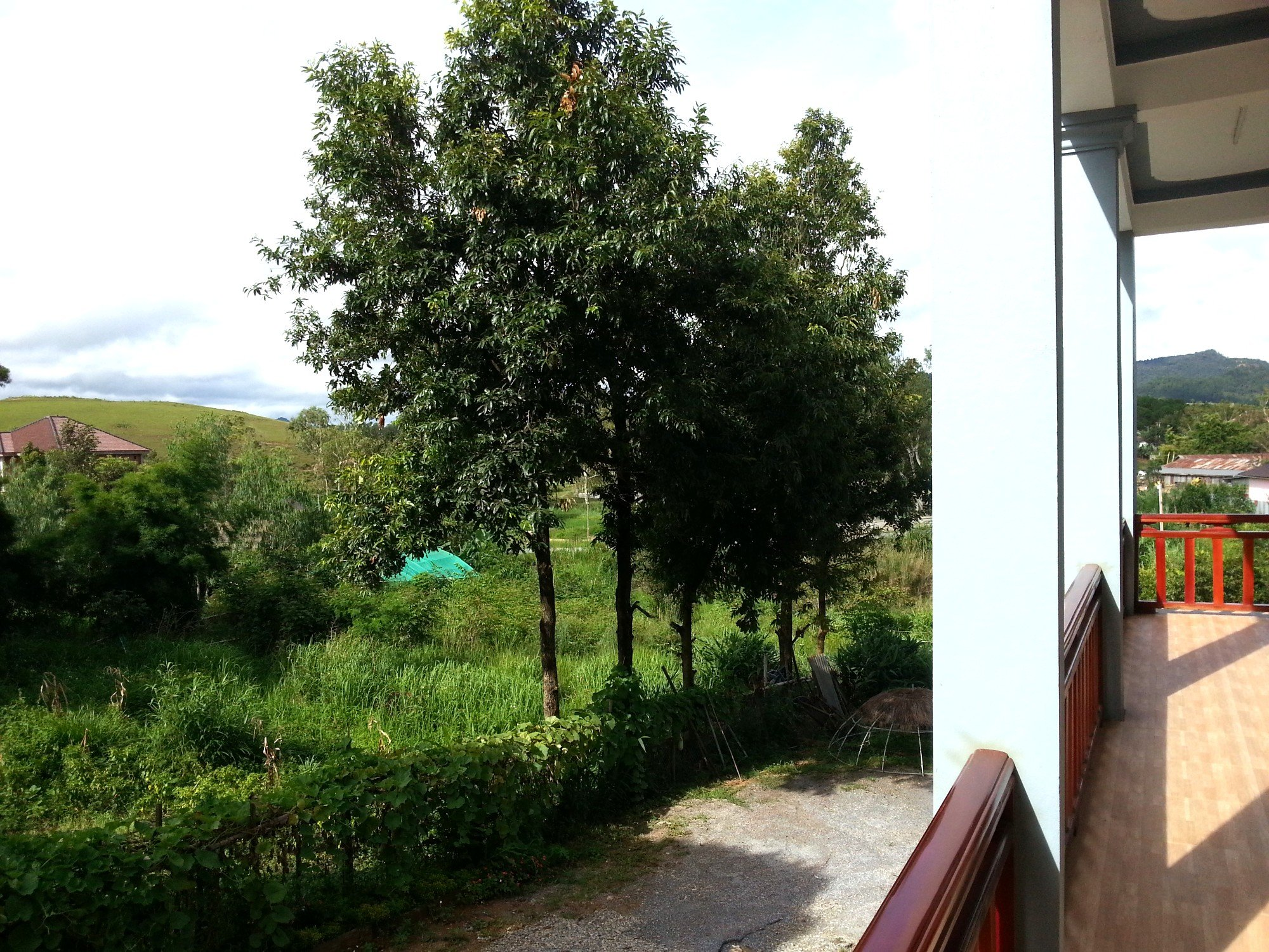 View at the Sipanya Guesthouse