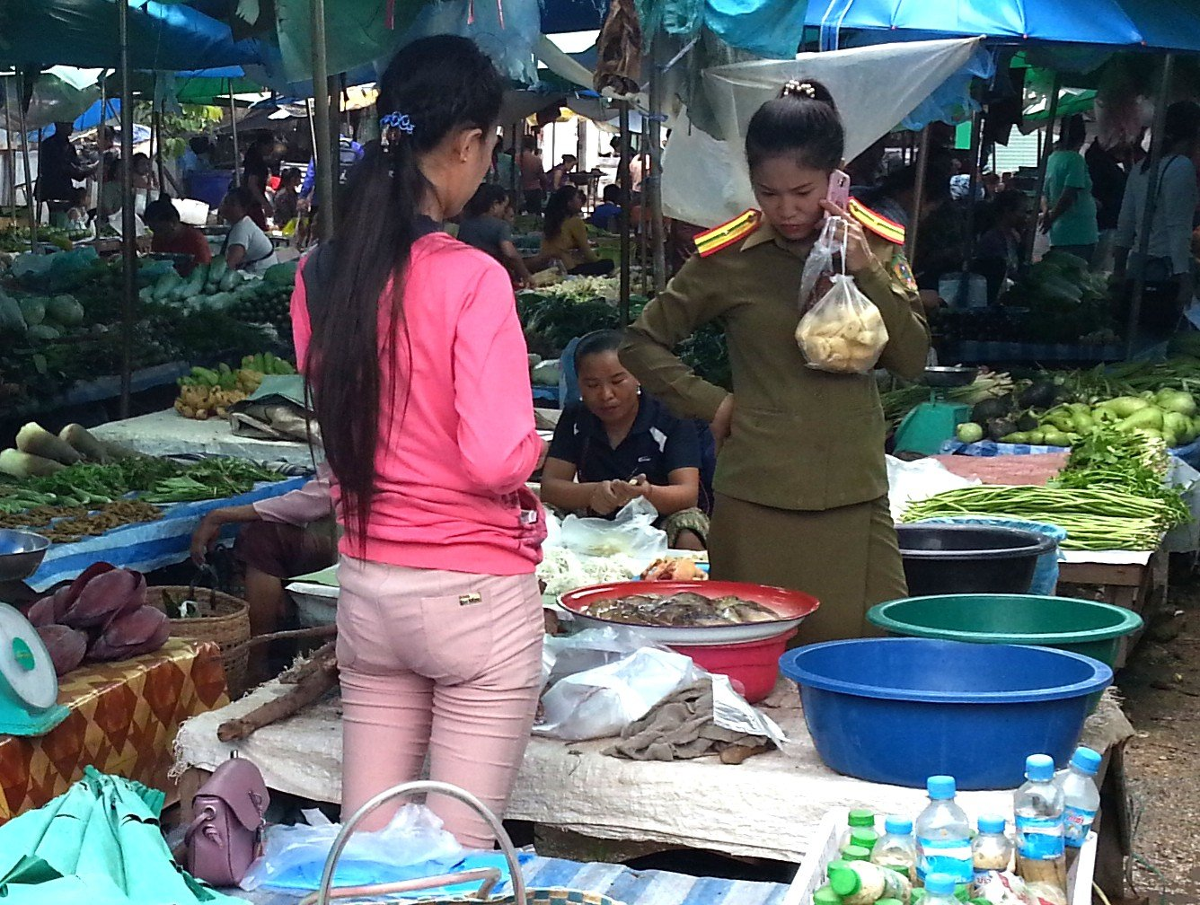 Shopper at Xayaboury Market